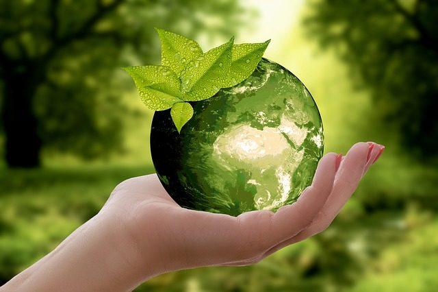 Canali ecologici
